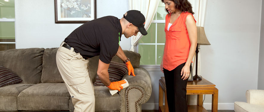 Hershey, PA carpet upholstery cleaning